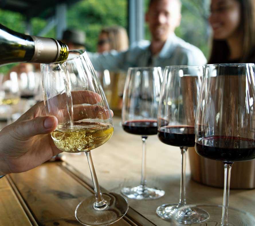 Vad Viva Wine Group erbjuder